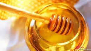 应该怎样选择优质蜂蜜  蜂蜜有酒精味还能喝吗