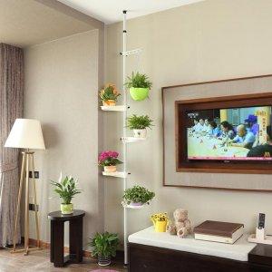当客厅装上这创意花架,又成了一道靓丽的风景线