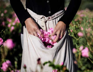Dior迪奥 闻香记 | 香水的前世今生
