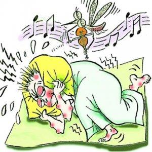 哪种型血的人爱招蚊虫?聪明人都用这几样工具驱蚊