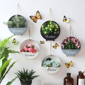 传统盆栽早过时,现在都兴这样的植物墙饰,绿植搬上墙,真稀奇
