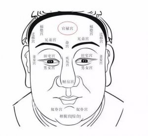 白馨月主任:怎样的额头形态才算符合美学观