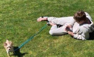 比伯和海莉的婚后生活幸福浪漫 比伯海莉遛狗方式就像父母带娃一样